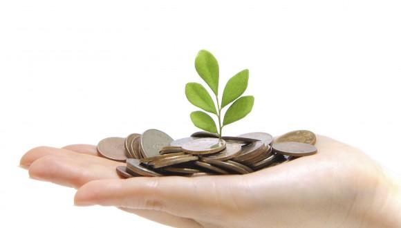 """Finances sostenibles: El Parlament Europeu ha aprovat """"Etiquetes Verdes"""" per als productes financers sostenibles"""