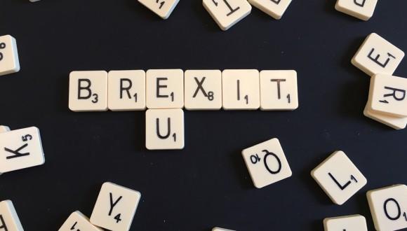Els Verds acusen el Regne Unit de tenir una posició negociadora sobre el Brexit totalment inconsistent