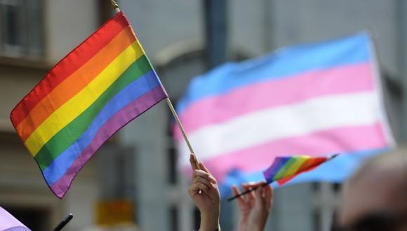 Más de 70 eurodiputados/das alertan a la CE del ataque de Hazte Oír a la comunidad transgénero