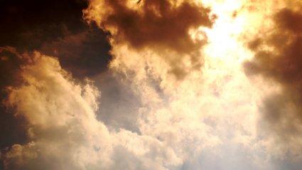 10 medidas prioritarias para salvar el clima!
