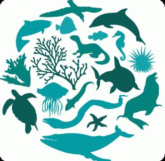 Fem una crida per aturar la pèrdua de biodiversitat