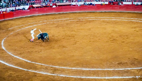 Opposition to the classification of Bullfighting as Intangible Cultural Heritage in Need of Urgent Safeguarding