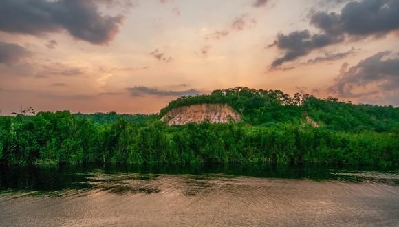 Carta a la vicepresidenta de Brasil sobre els plans per restringir les activitats de les ONG a l'Amazones