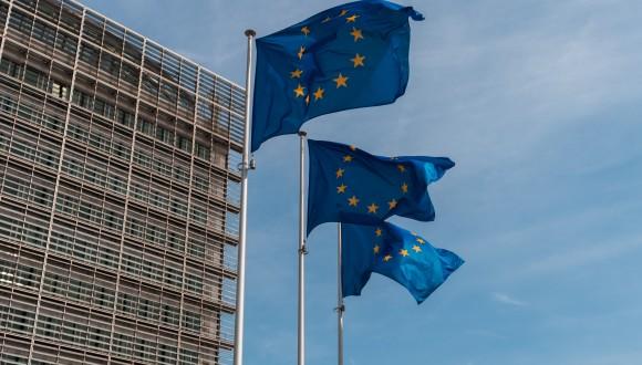 Demanem protecció eficaç de les minories nacionals i lingüístiques a Europa
