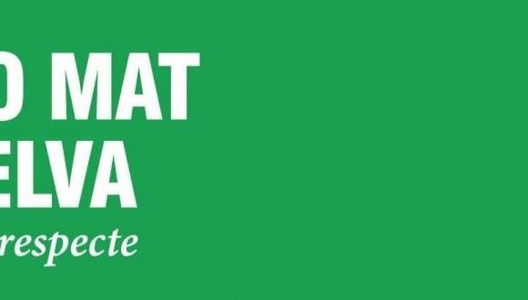 Els eurodiputats catalans dels Verds porten a la Comissió Europea el NO a la MAT