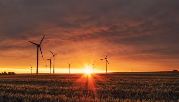 El grupo Verde exige a la Comisión Europea que actúe ante incumplimientos de requisitos ambientales y sociales en los planes nacionales de los fondos de recuperación