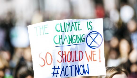 La UE debe tomar medidas más ambiciosas para paliar la crisis climática y proteger la biodiversidad